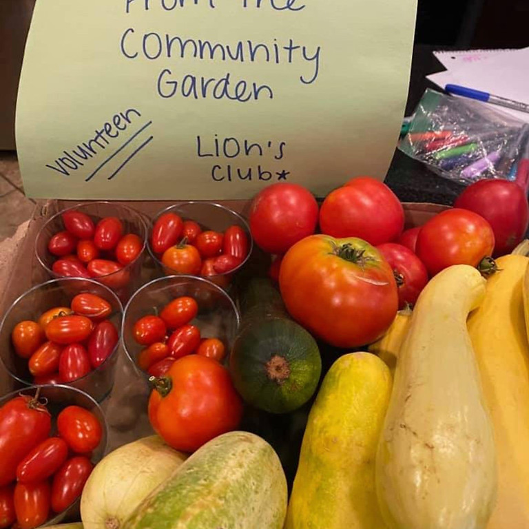 🍅🥕🥒Summer Garden for Food Banks