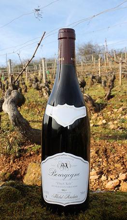 Domaine Michel Arcelain, Bourgogne Pinot noir