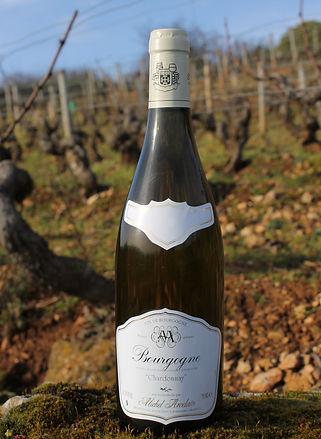 Domaine Michel Arcelain, Bourgogne Chardonnay