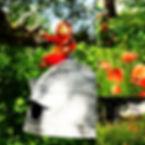Le jardin.jpg
