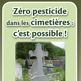 Cometière_edited_edited.png