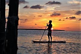 view-paddleboards-at-kayak-world-product
