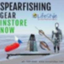 Spearfishing gear here now.jpg