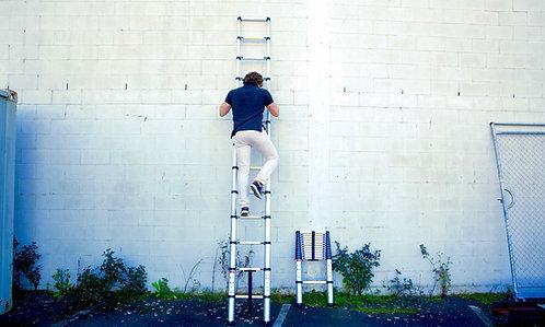 Telescopic Ladder 3.8m