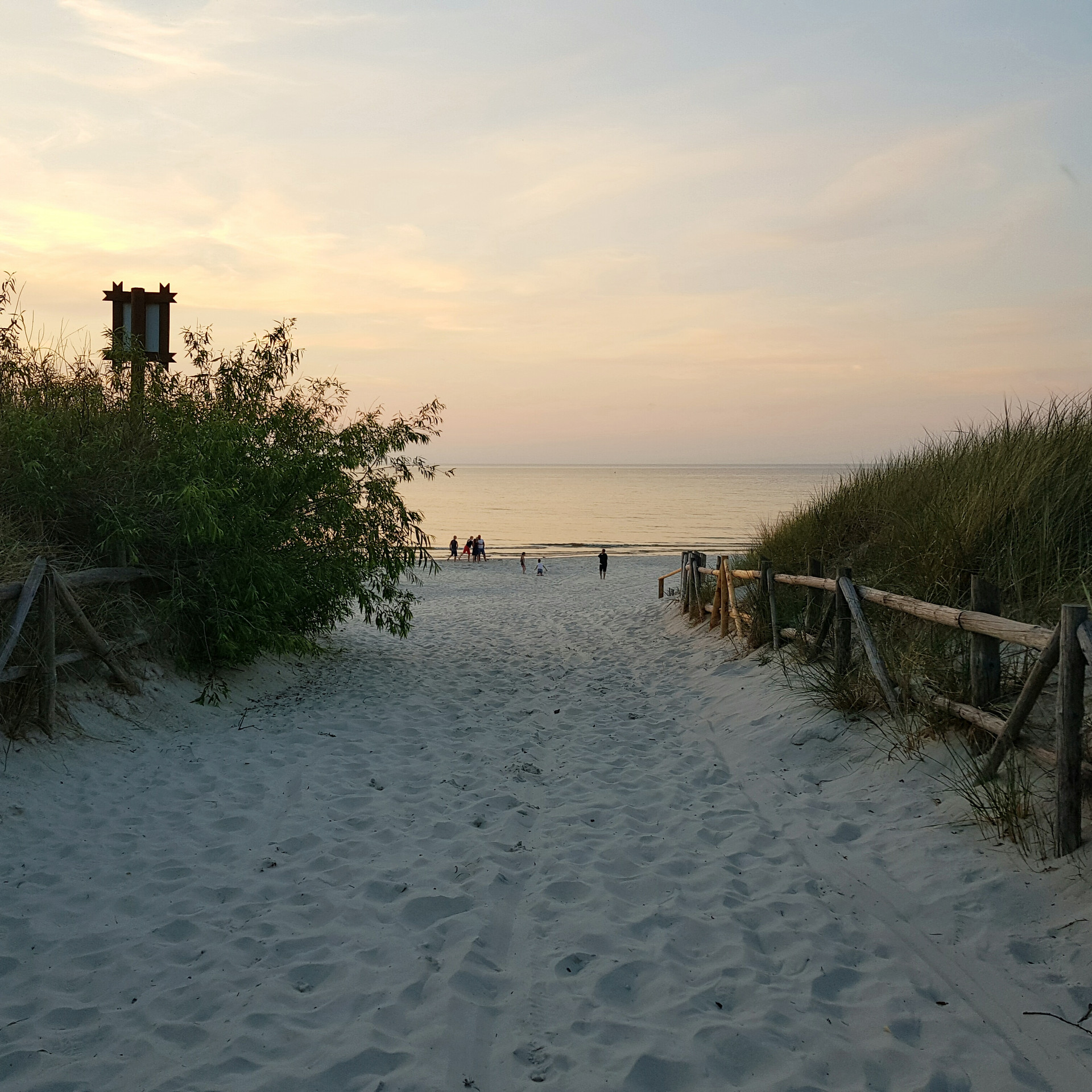 Biała Wydma Lubiatowo - wyjście na plażę