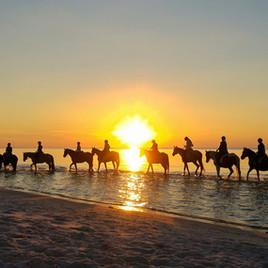 Biała Wydma Lubiatowo - zachód słońca