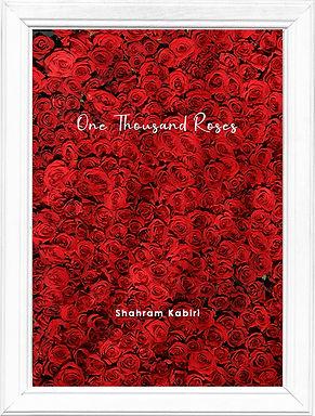 book frame 2.jpg