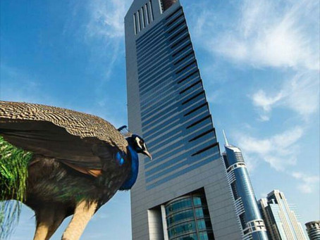 Jumeirah Emirates Towers turned 20 in 2020