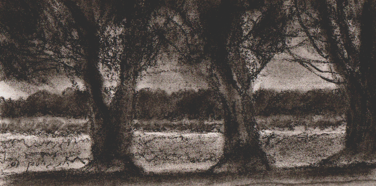 Trees I RUTH GROSSMAN