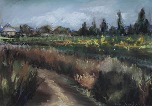 A Path in Sunflowers Field  I RUTH GROSSMAN
