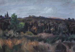 Field  I RUTH GROSSMAN