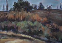 Path near Field I RUTH GROSSMAN