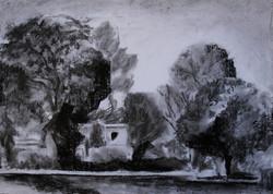 Between Trees -1 I RUTH GROSSMAN