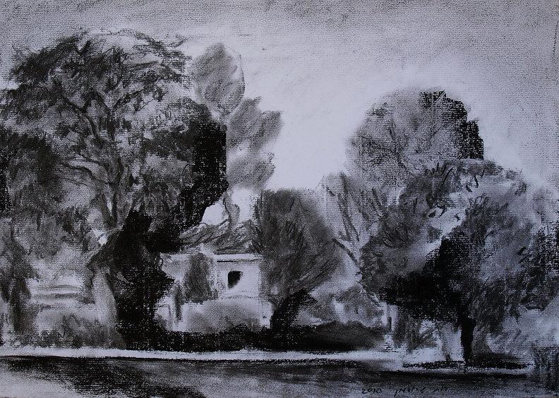 Ruth Grossman A Structure Between Trees