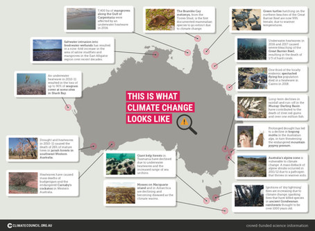 Release of Climate Council's report - This Is What Climate Change Looks Like