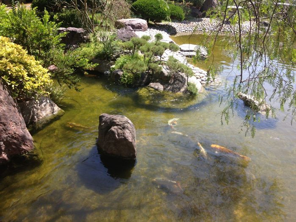 '15.07.26-montecarlo-jardin japanese - 08