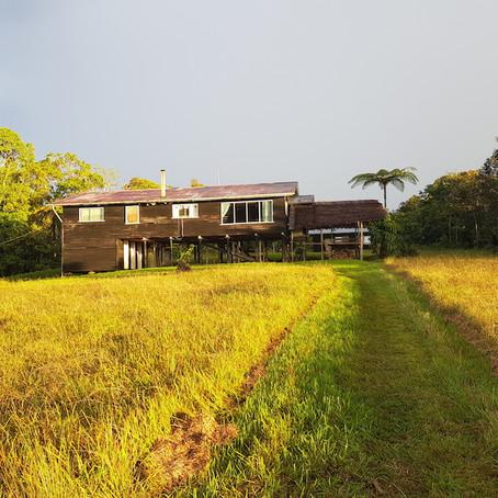 Bosavi Diary: Saksak, Waterfalls, Leeches and a Delayed Pick-Up