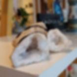 quartzo transparente.jpg