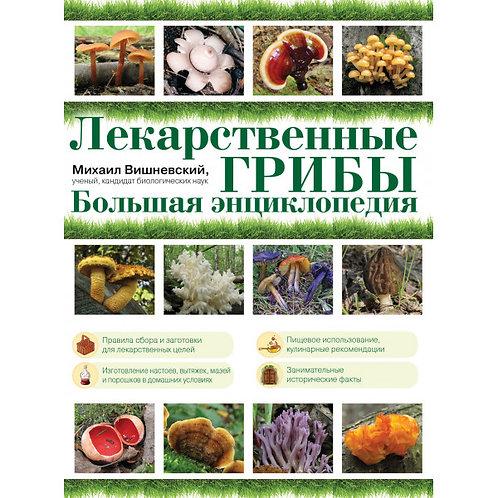 ЛЕКАРСТВЕННЫЕ ГРИБЫ / большая энциклопедия / E-Book