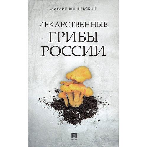 ЛЕКАРСТВЕННЫЕ ГРИБЫ РОССИИ / ИЛЛЮСТРИРОВАННЫЙ СПРАВОЧНИК / E-Book