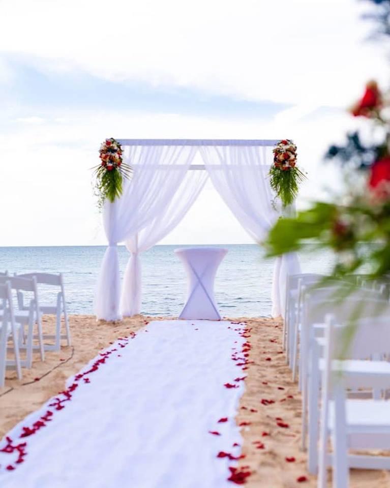 Wedding Arch 2