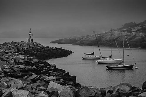Foggy Dawn in Rockport Harbor