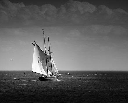Sailing in Gloucester