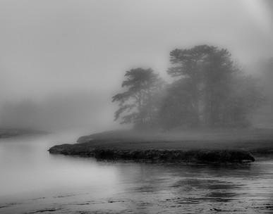 Inland Marsh Fog