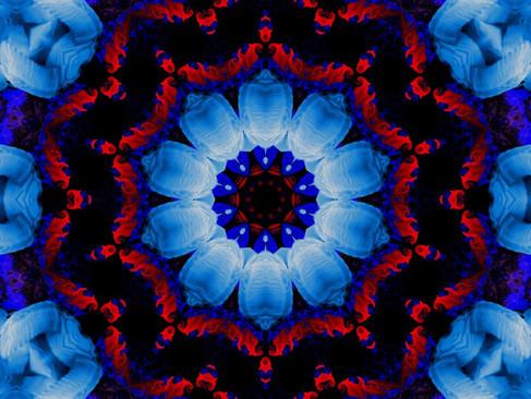 Swan_RedStream_KLADDAL_14_1000.jpg