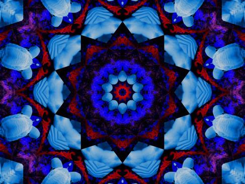 Swan_RedStream_KLADDAL_10_1000.jpg