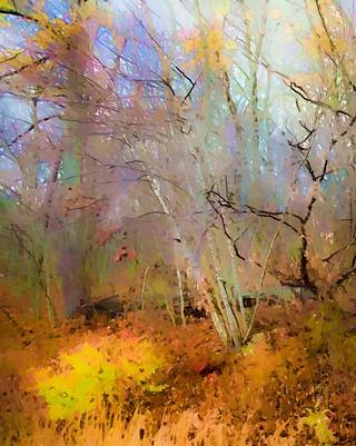Autumn Flourish