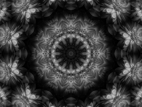 DSC_4833_5111 x 4016_KLAD19_1000.jpg