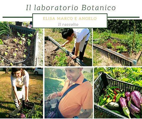 Laboratorio-Botanico.jpg