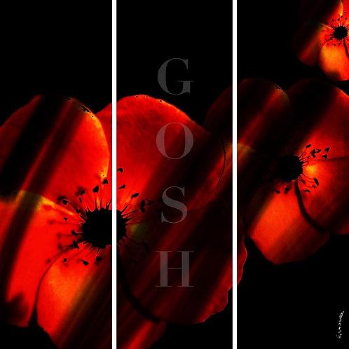 GOSH180424