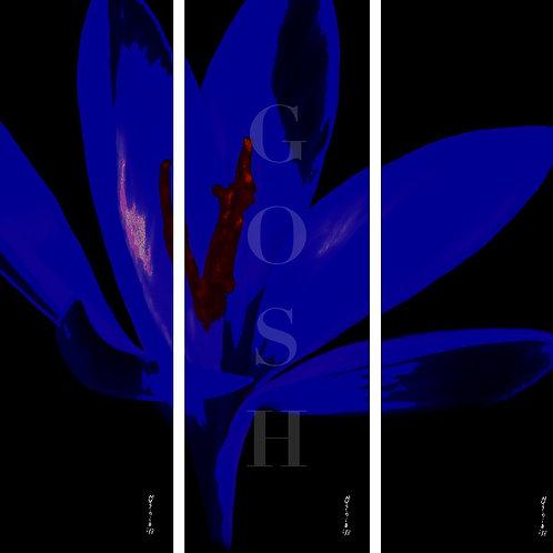 GOSH180205