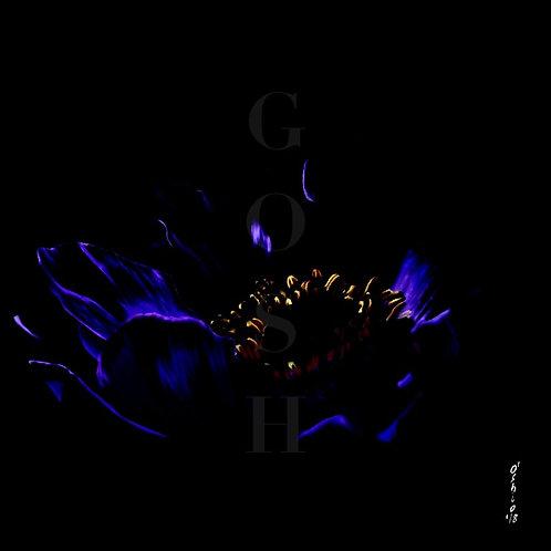 GOSH180213