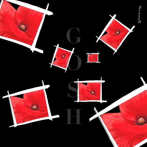 GOSH171211