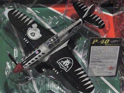 2004 Oakland Raiders P-40 Warhawk Airplane