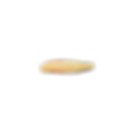 fries-5.png