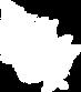 Small fern logo-01.png