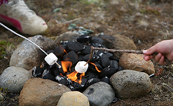 Roasted Marshmellows.png