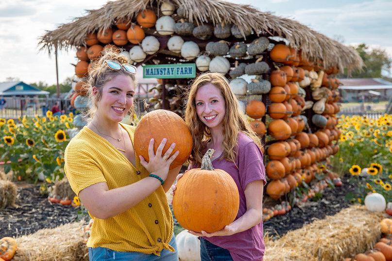 Pumpkin Patch & Pumpkin House