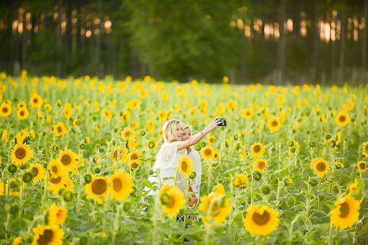 Sunflower Selfie.jpg