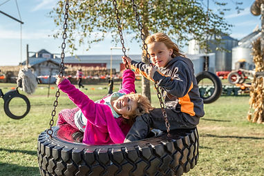Kids on tire swing.jpg