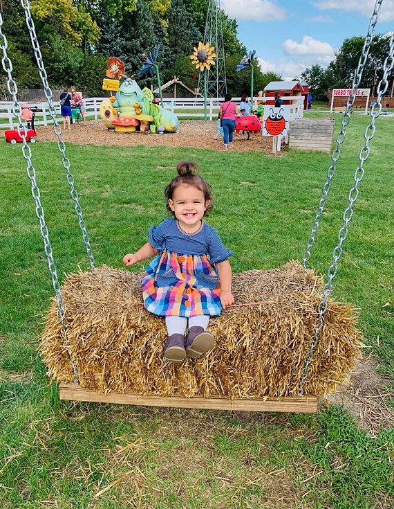 Hay Swing.jpg