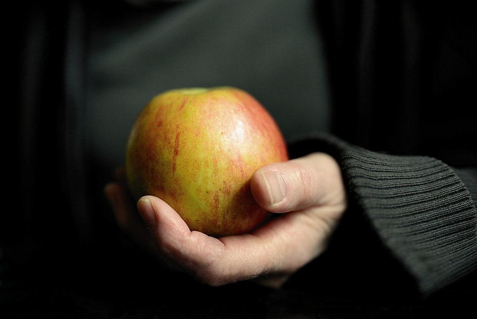 apple-5391076_1920.jpg