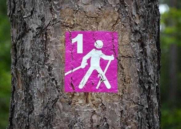 Nordic Walking Einzel-/Paar Unterricht