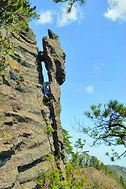 トカゲ岩4.jpg