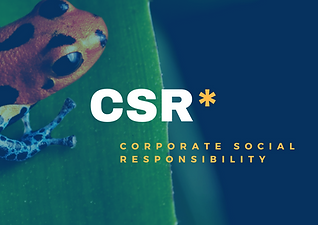 CSR, corporate social responsib sustainability consultancy, sustainability consultancy london, corporate responsibility, environmental responsibility, corporate responsibility, CSR London,