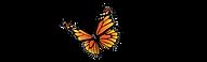 Logo DFM-2.png